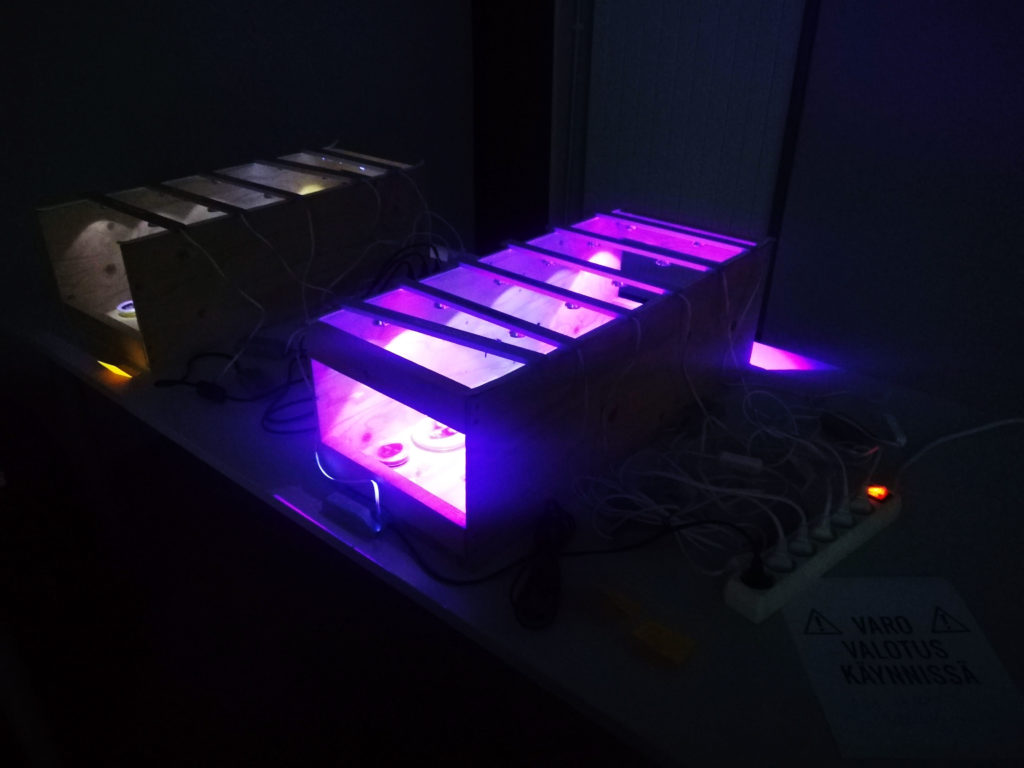 The UV-lamps.